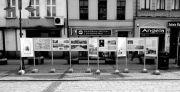 Rok Antoniego Kaliny w Ostrowie Wielkopolskim